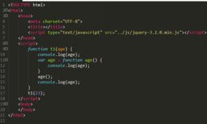 javascript立即执行函数( function(){…} )()和( function (){…} () )